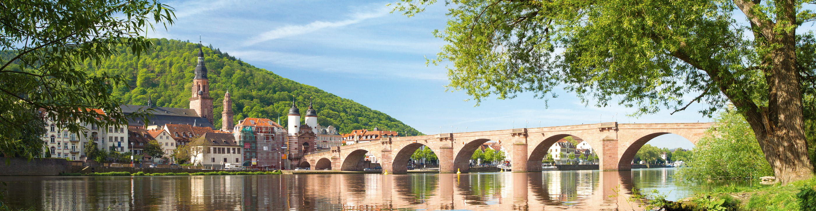 Bridge Heidelberg Germany