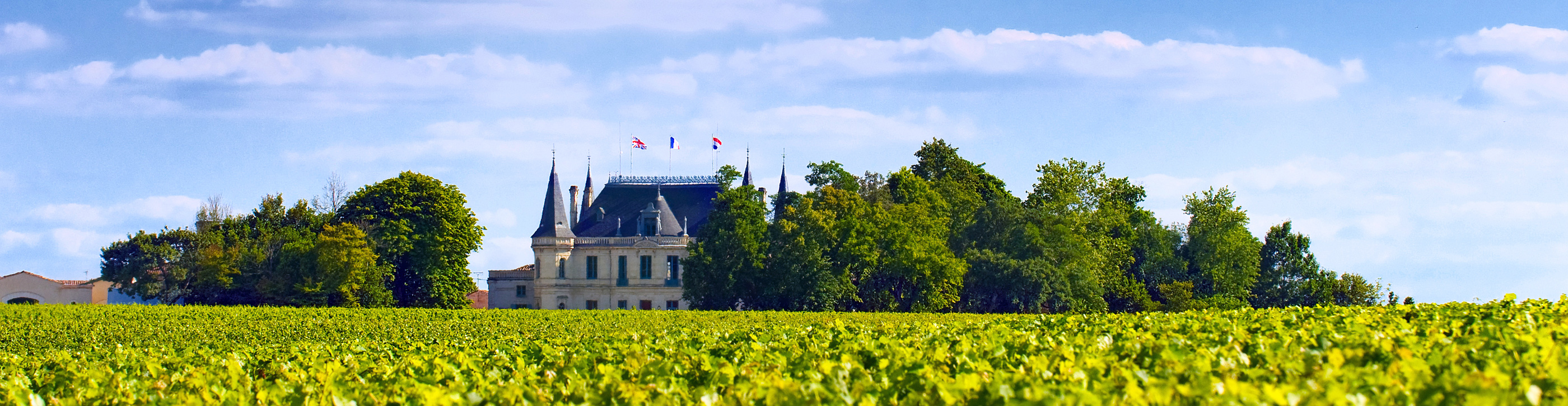 Bordeaux vineyards chateaux Dordogne Garonne rivers France